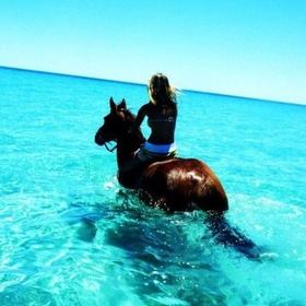 Horseback Ride in the Ocean in Jamaica - Bucket List Ideas