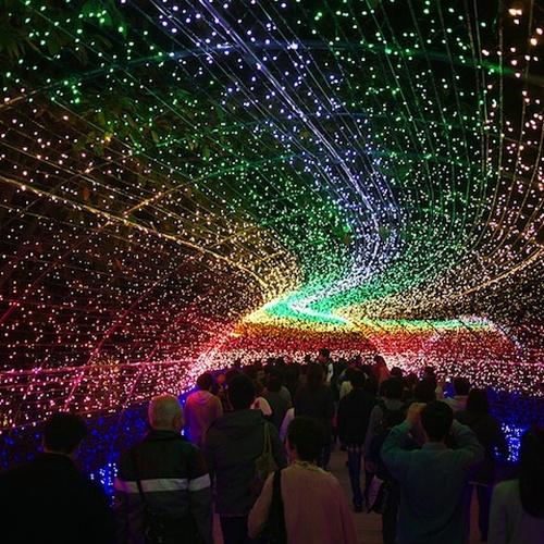 Walk through Japans tunnel of lights - Bucket List Ideas
