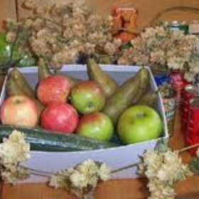 Donate food for a Harvest Festival - Bucket List Ideas