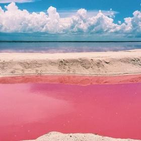 Swim on pink water - Bucket List Ideas
