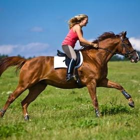 Learn how to ride a horse - Bucket List Ideas