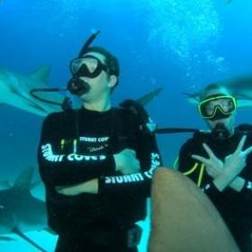 Dive with sharks - Bucket List Ideas