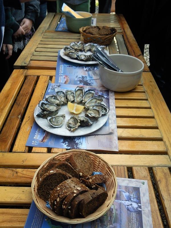 Try oysters - Bucket List Ideas