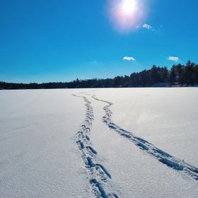Go Snowshoeing - Bucket List Ideas