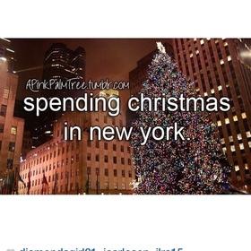 Spend Christmas in New York - Bucket List Ideas