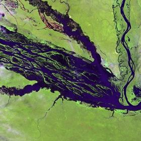 Visit Central Amazon Conservation Complex - Bucket List Ideas