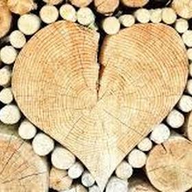 Celebrate Our Wood Anniversary - Bucket List Ideas