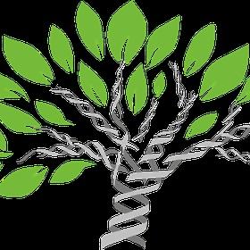 Create a family tree - Bucket List Ideas