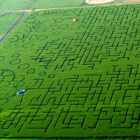 Go through World's Largest Maze - Bucket List Ideas