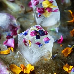 Make edible flower ice cubes - Bucket List Ideas