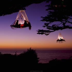 Go tree camping - Bucket List Ideas