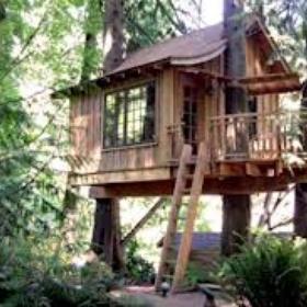 Build a treehouse - Bucket List Ideas