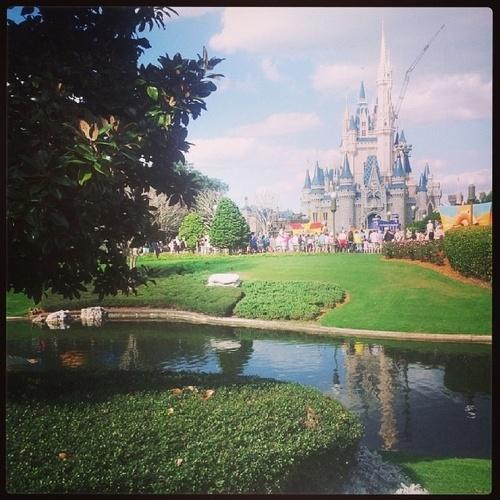 Visit Disney World - Bucket List Ideas