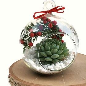 Make a terrarium ornament - Bucket List Ideas