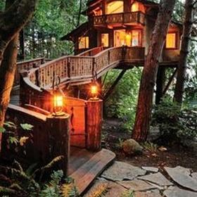 """النوم في منزل على شجرة """"Sleep In A Tree House"""" - Bucket List Ideas"""