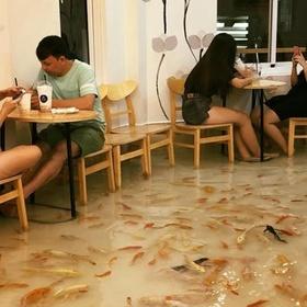 Eat at Fish Cafe in Vietnam - Bucket List Ideas