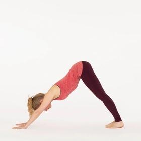 Be able to do downward dog (flexibility) - Bucket List Ideas