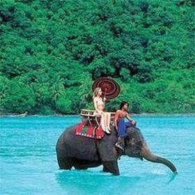 Swim with elephants - Bucket List Ideas