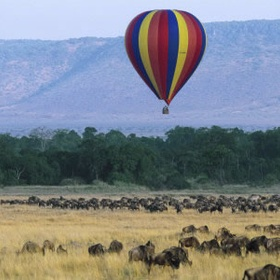 Watch migration while on a hot air balloon - Bucket List Ideas