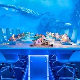 Dine at the Sublimotion Restaurant, Ibiza - Bucket List Ideas