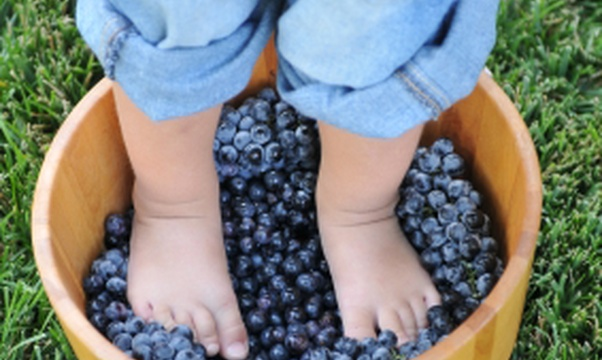 Go grape stomping - Bucket List Ideas