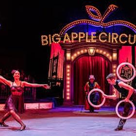 Go to the circus - Bucket List Ideas