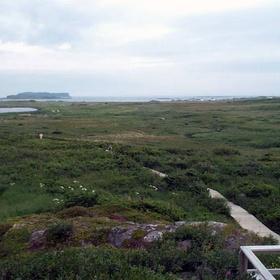 Visit L'Anse aux Meadows National Historic Site - Bucket List Ideas