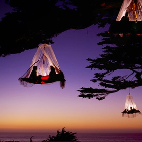 Camp in a Forest Canopy Hanging From a Tree In the German Alps - Bucket List Ideas