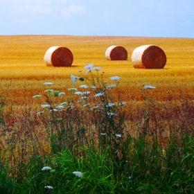 Visit Indiana - Bucket List Ideas