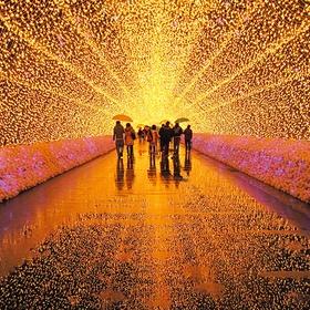 """المشي في نفق الأضواء في اليابان """"Walk through Japans tunnel of lights"""" - Bucket List Ideas"""