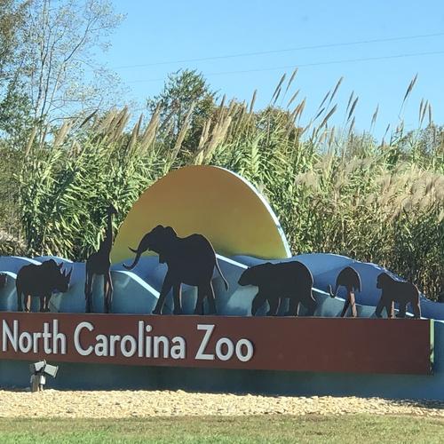 Visit the North Carolina Zoo - Bucket List Ideas