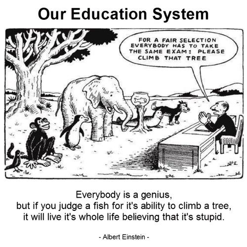 Start An Education - Bucket List Ideas