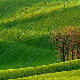 See Rolling Hills of Moravia - Bucket List Ideas