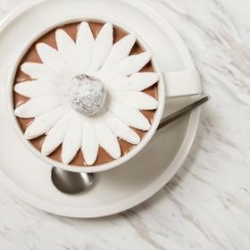 Make a Blooming Hot Chocolate - Bucket List Ideas