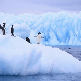 Visit antarctica - Bucket List Ideas