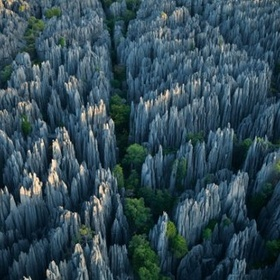 See the stoneforrest in China - Bucket List Ideas