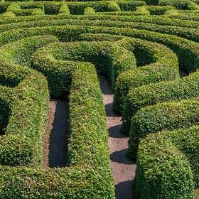 Go through a hedge maze - Bucket List Ideas