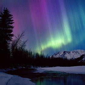 See The Northern Lights (the Aurora Borealis) - Bucket List Ideas