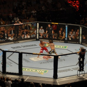 Step into the octagon in competition - Bucket List Ideas