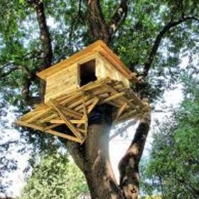 Build and sleep in a treehouse - Bucket List Ideas