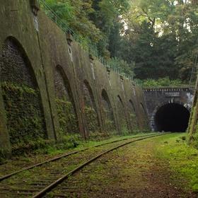Explore the abandoned tracks of La Petite Ceinture in Paris - Bucket List Ideas
