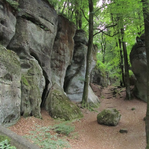 Hike in the Müllerthal, Luxemburg's Little Switzerland - Bucket List Ideas
