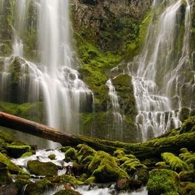 Visit Proxy Falls in Oregon - Bucket List Ideas