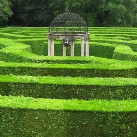 Go though a Hedge maze - Bucket List Ideas