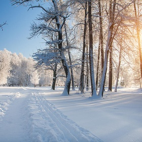 Create a Winter Themed Photo Album - Bucket List Ideas