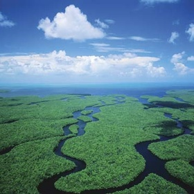 The Everglades, Florida - Bucket List Ideas