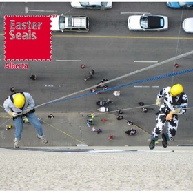 Take part in the Easter Seals Drop Zone and rappel down a high rise - Bucket List Ideas