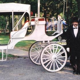 Ride in a horse-drawn carriage - Bucket List Ideas
