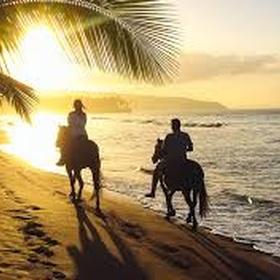 Go horse riding at the beach - Bucket List Ideas
