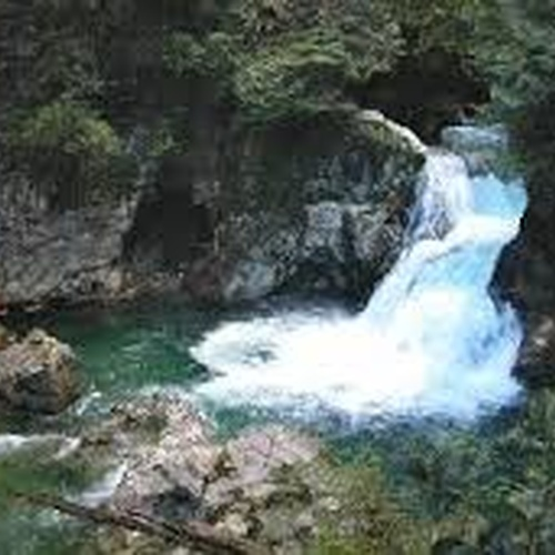 Go to Lynn Canyon - Bucket List Ideas